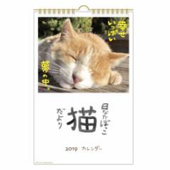 カレンダー 2019 年 日なたぼっこ猫だより 壁掛け スケジュール 18.4×28.3cm アクティブコーポレーション 2019 Calendar