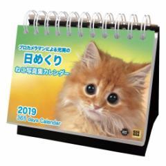 2019 年 カレンダー ねこ写真集カレンダー 卓上 日めくり ねこ インテリア平成31年 暦  予約 cp100