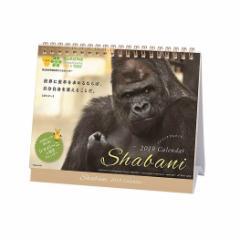 シャバーニ 格言 ゴリラ カレンダー2019年 卓上 スケジュール 動物 写真 書き込み平成31年 暦 予約 メール便可  cp100