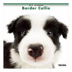 ボーダーコリー 2019 カレンダー 壁掛け THE DOG いぬ 9月中旬発売予定 60×30cm 2019 Calendar 予約