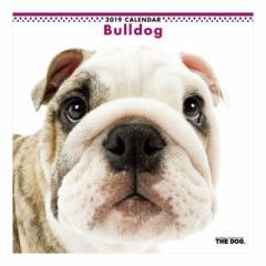 ブルドッグ カレンダー 2019 年 壁掛け THE DOG いぬ 9月中旬発売予定 60×30cm 2019 Calendar 予約