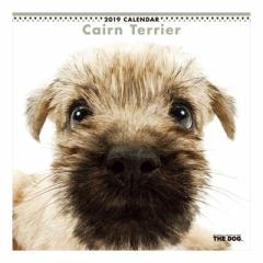 ケアーンテリア カレンダー 2019 年 壁掛け THE DOG いぬ 9月中旬発売予定 60×30cm 2019 Calendar 予約