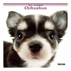 チワワ 2019 年 カレンダー 壁掛け THE DOG いぬ 9月中旬発売予定 60×30cm 2019 Calendar 予約