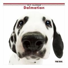ダルメシアン 2019 カレンダー 壁掛け THE DOG いぬ 9月中旬発売予定 60×30cm 2019 Calendar 予約