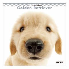 ゴールデンレトリーバー カレンダー 2019 年 壁掛け THE DOG いぬ 9月中旬発売予定 60×30cm 2019 Calendar 予約