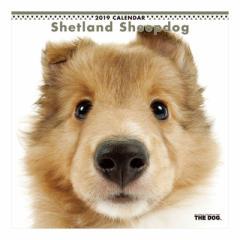 シェットランドシープドッグ カレンダー 2019 年 壁掛け THE DOG いぬ 9月中旬発売予定 60×30cm 2019 Calendar 予約