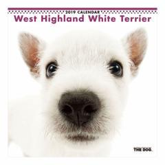 ウエストハイランドホワイトテリア 2019 年 カレンダー 壁掛け THE DOG いぬ 9月中旬発売予定 60×30cm 2019 Calendar 予約