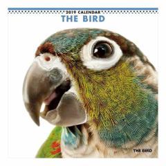 THE BIRD カレンダー 2019 年 壁掛け とり 9月中旬発売予定 60×30cm 2019 Calendar 予約