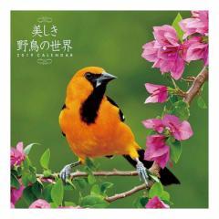 美しき野鳥の世界 2019 カレンダー 壁掛け 9月中旬発売予定 60×30cm 2019 Calendar 予約