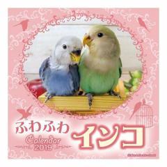 ふわふわインコ カレンダー 2019 年 壁掛け 9月中旬発売予定 48×24cm 2019 Calendar 予約