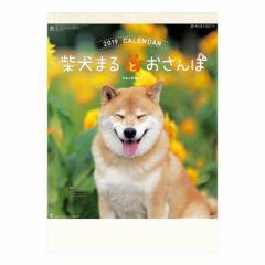 柴犬まるとおさんぽ カレンダー 2019 年 壁掛け いぬ 9月中旬発売予定 54×38cm 2019 Calendar 予約