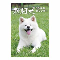 秋田犬 カレンダー 2019 年 卓上 いぬ 10月上旬発売予定 B6・28P 2019 Calendar 予約 メール便可