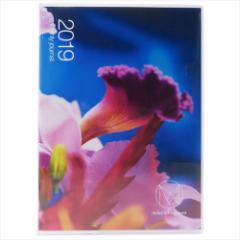 手帳 2019年 月間 M/mika ninagawa B6 マンスリー 166 アート ガーリー スケジュール帳 平成31年手帖 メール便可