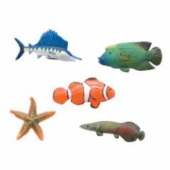 魚 Bセット フィッシュマグネット5個セット キッチン磁石 文房具
