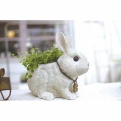 取寄品 RABBIT'S FARM 鉢植え プランターS ウサギ 動物 おしゃれインテリア雑貨通販