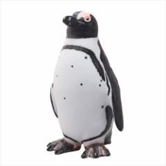 ケープペンギン フィギュア ビッグサイズフィギュア ソフトビニールモデルアニマル 海の生き物 グッズ