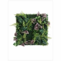 取寄品 送料無料 Wall Plants frame インテリア アート インダストリアルスタイル シダ&ベゴニア ホワイトフレーム