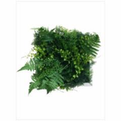 取寄品 送料無料 Wall Plants frame インテリア アート インダストリアルスタイル グリーンミックス ホワイトフレー