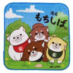 忠犬もちしば ミニタオル はんかち タオル 集合 犬 キャラクターグッズ メール便可