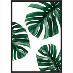取寄品 送料無料 デザイナーズアート インテリア パネル PLANT FILE モンステラ2 額付きポスターインテリア雑貨通販
