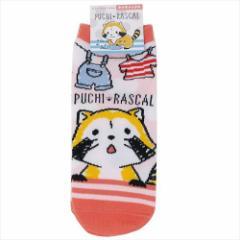 あらいぐまラスカル 女性用靴下 レディースソックス ランドリー 世界名作劇場 22〜24cm アニメキャラクター グッズ メール便可