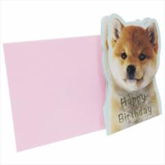 いぬねこ グリーティングカード 顔がゆらゆら揺れるバースデーカード 柴犬 いぬ 誕生日おめでとう かわいい グッズ メール便可