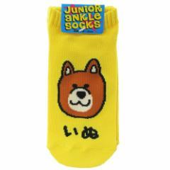 いぬさん 子供用 靴下 ジュニア アンクル ソックス 18〜22cm かわいい グッズ メール便可