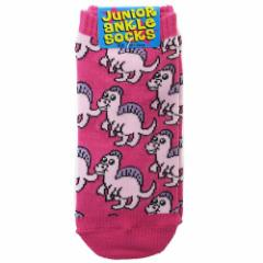 スピノサウルス 子供用 靴下 ジュニア アンクル ソックス 恐竜 18〜22cm かわいい グッズ メール便可