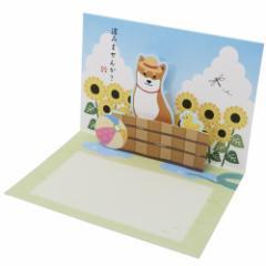 グリーティングカード 柴田さんの住む東京わさび町 POP-UP カード 涼みませんか? いぬ 暑中見舞い 封筒付き グッズ メール便可