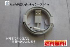 17c2f0682d ケーブル ライトニングケーブル iPhone 充電コード Apple純正 アイフォン7/7plus/6s/6splus