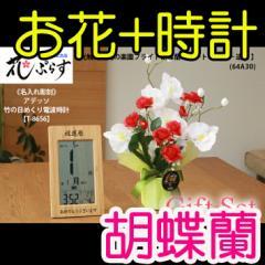 【 送料無料 名入れ 】花 ぷらす 《 竹の 日めくり 電波時計 》 ブライト胡蝶蘭 64A30-T-8656 ギフ