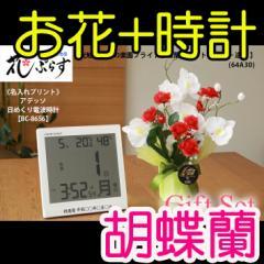 【 送料無料 名入れ 】花 ぷらす 《 日めくり 電波時計 》 ブライト胡蝶蘭 64A30-bc8656 ギフトセッ