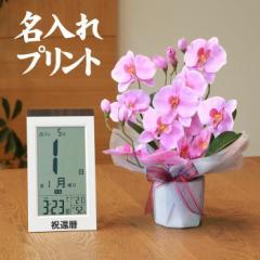【 送料無料 名入れ 】花 ぷらす 《 日めくり 電波時計 》 ファレノ胡蝶蘭 68A25-KW9254 ギフトセッ