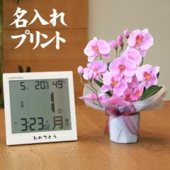 【 送料無料 名入れ 】花 ぷらす 《 日めくり 電波時計 》 ファレノ胡蝶蘭 68a25-bc8656 ギフトセッ