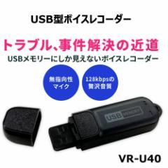 【MEDIK】【ポイント10倍】超小型 USB型 ボイスレコーダー VR-U40【8GB】USB仕掛け録音ボイスレコーダー 浮気調査専用 モラハラ セクハラ