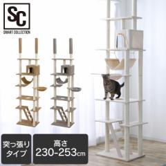 キャットタワー 突っ張り CCCT-4060T キャット タワー 猫タワー 爪とぎ ハンモック ハウス つっぱり 猫 ねこ ベージュ ブラウン グレー