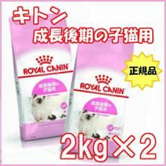 【2個セット】ロイヤルカナン 猫 キャットフード キトン 2kg ドライ FHN 子猫用 正規品 成長後期の子猫用 rccf11 送料無料