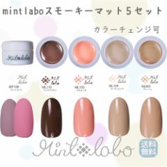 【送料無料・日本製】mint-labo スモーキーマット カラージェル 5色セット