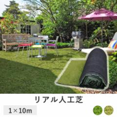 芝目が綺麗な 人工芝 ロール 1m × 10m 深型 芝たけ3.5cm   固定ピン付き 天然芝感 35mm リアル人工芝 芝マット 人工芝生 (C227)