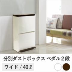 分別ダストボックス ペダル2段ワイド 40L   ゴミ箱 ごみ箱 ダストボックス おしゃれ 分別 2分別 キッチン リビング ペダル(C020)