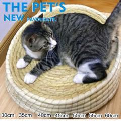 ペット ベッド 噛み耐え 藁 座布団 猫 小型犬 高級 クッション 通気性 ペットハウス 簡易 寝具 小動物 夏用