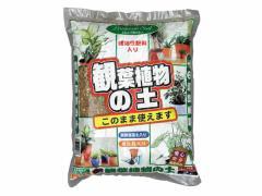 大宮GS/観葉植物の土 2L