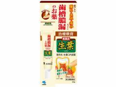 【第3類医薬品】薬)小林製薬/生葉口内塗薬 20g