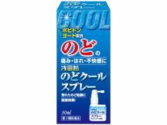 【第3類医薬品】薬)浅田飴/のどクールスプレー 30ml