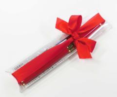 【気軽なプレゼントに】ギフト用リボン付きBAOER赤い万年筆とインクカートリッジ2本のセット、コンバーター付き