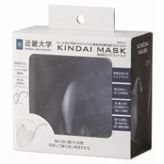 スケーター 近大マスク 透明マスク 日本製 MSKDT1