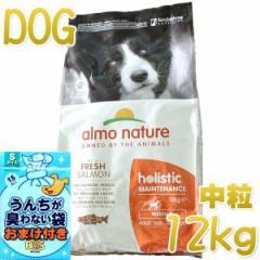 最短賞味2022.5・アルモネイチャー 犬 サーモン 中粒 12kg ald745成犬用ホリスティック ドッグフードalmo nature正規品