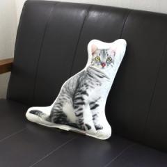 SALE/アンダロ グレイ キャットフード 猫柄クッション アニマルクッション リアルプリント・ポーランド製・ANDARO an47218