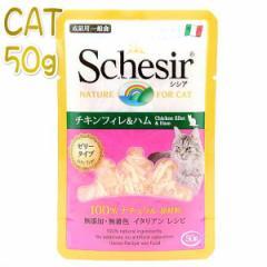最短賞味2021.12・シシア 猫 パウチ(チキンフィレ&ハム)50g scc204ゼリータイプ 成猫用ウェット 一般食キャットフードSchesir正規品
