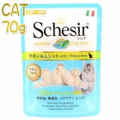 最短賞味2022.1・シシア 猫(チキン&ムレット)70g scc590ブロスタイプ 成猫用ウェット 一般食 キャットフード 正規品